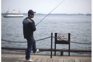 Local man fishing in Toronto Harbour.