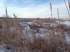 Entrance to Eagle Marsh, part of the Little River Wetlands Project. (Andrew Reeves)
